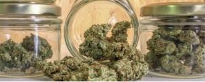 marijuana container