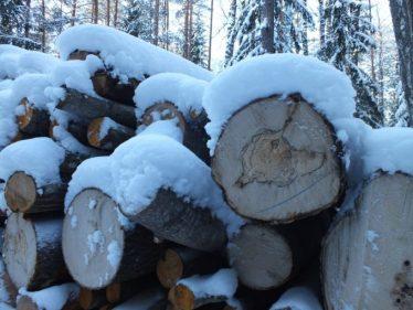 Apvaliąją medieną