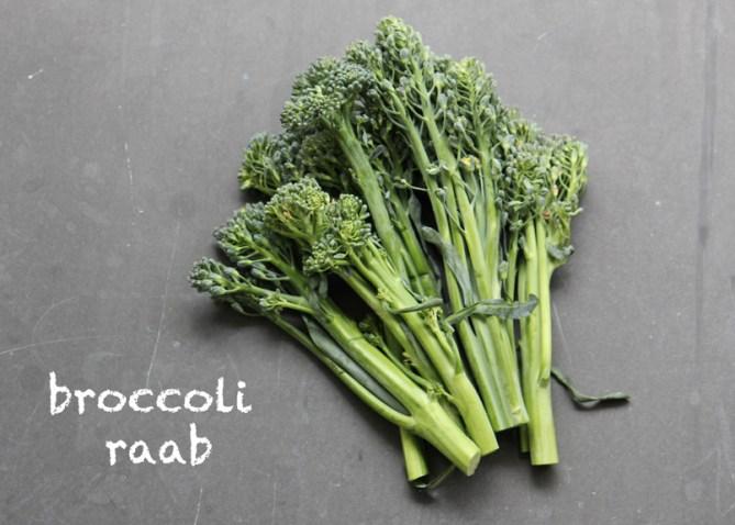 SFC_broccoli_raab_labeled