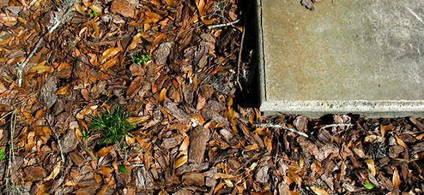 mulch step