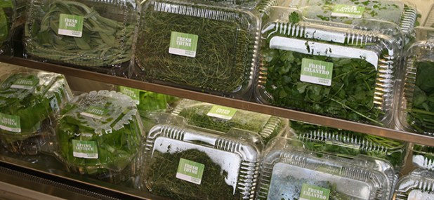 buy culinary herbs