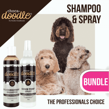 Top Tips for Grooming an Unruly Doodle Coat