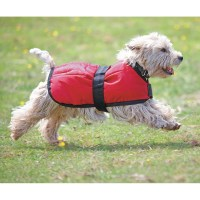 Buy cheap Dog coat - compare Pets prices for best UK deals