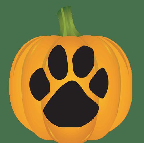 Paw Print Pumpkin