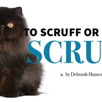 To Scruff or Not to Scruff