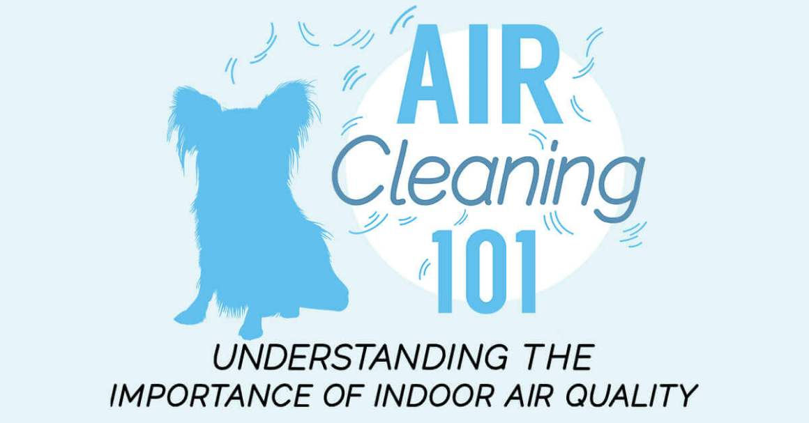 Air Cleaning 101: Understanding the Importance of Indoor Air Quality