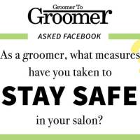 As a Groomer What Measures Have You Taken to Stay Safe in Your Salon?