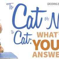 To Cat or Not to Cat: What's Your Answer?