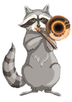 rocco the raccoon