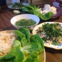 Chicken Larb Recipe