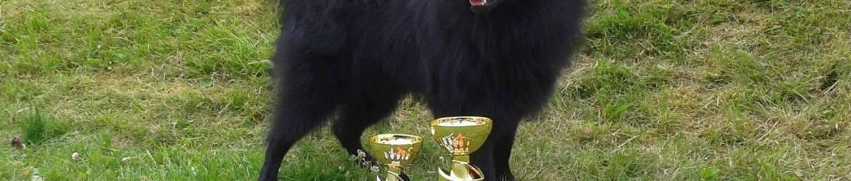 Grosspitz Dog Show Finland