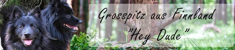 Banner_Grosspitz-aus-Finland_Hey-dude