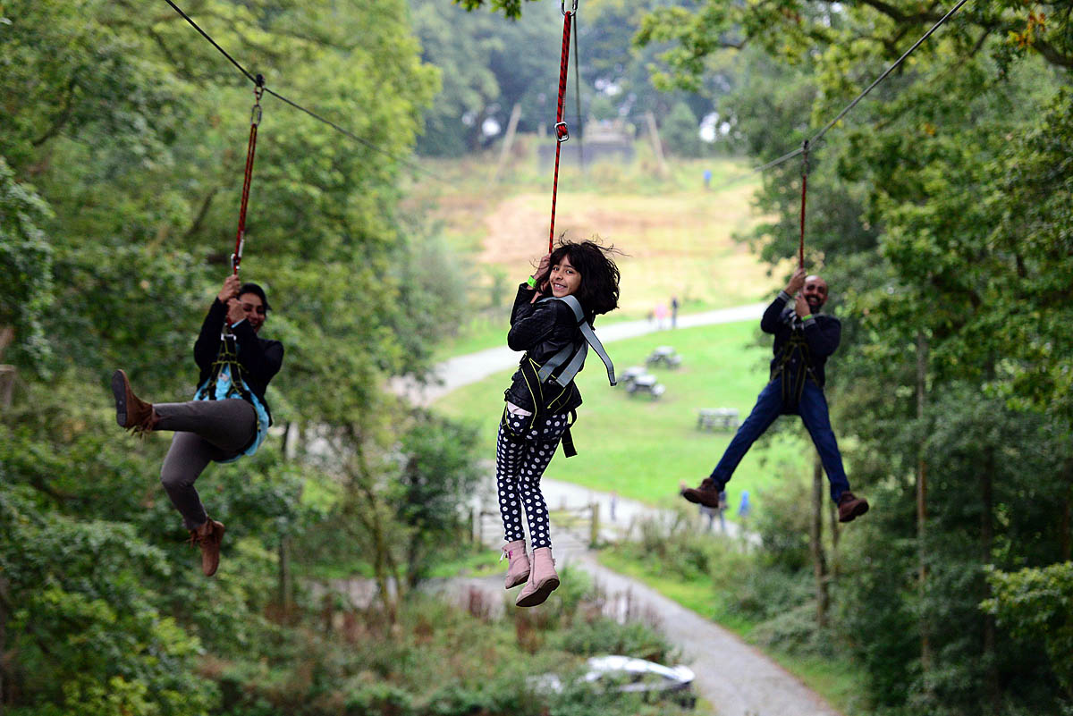 4 man zip wire wales arduino wiring diagram software grough treetop trek firm opens talks on building thirlmere zipwire users a triple photo