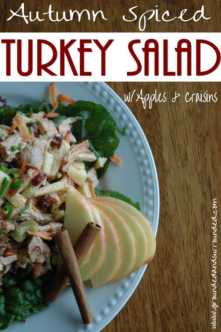 Autumn Spiced Turkey Salad If you have leftover turkey, this fall recipe is a must! This healthy and unique salad recipe combines all the flavors of fall. The apples and dried cranberries are sweet and tart, and the spices complement the flavor of the turkey. Find more recipes like this at https://www.groundedandsurrounded.com/recipe/autumn-spiced-turkey-salad/