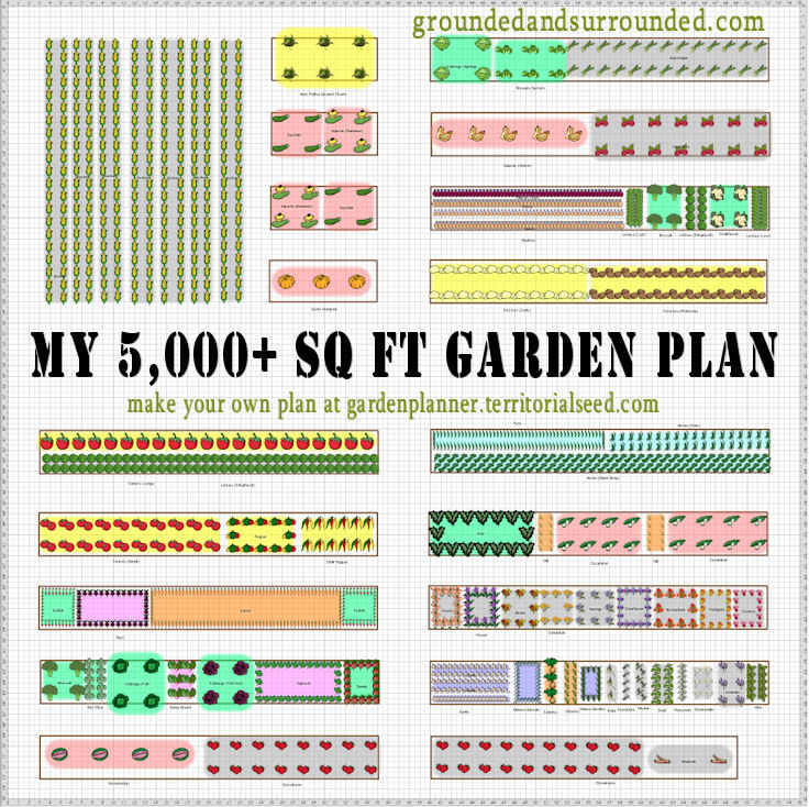 My 5,000+ Sq Ft Vegetable Garden Plan - Grounded & Surrounded