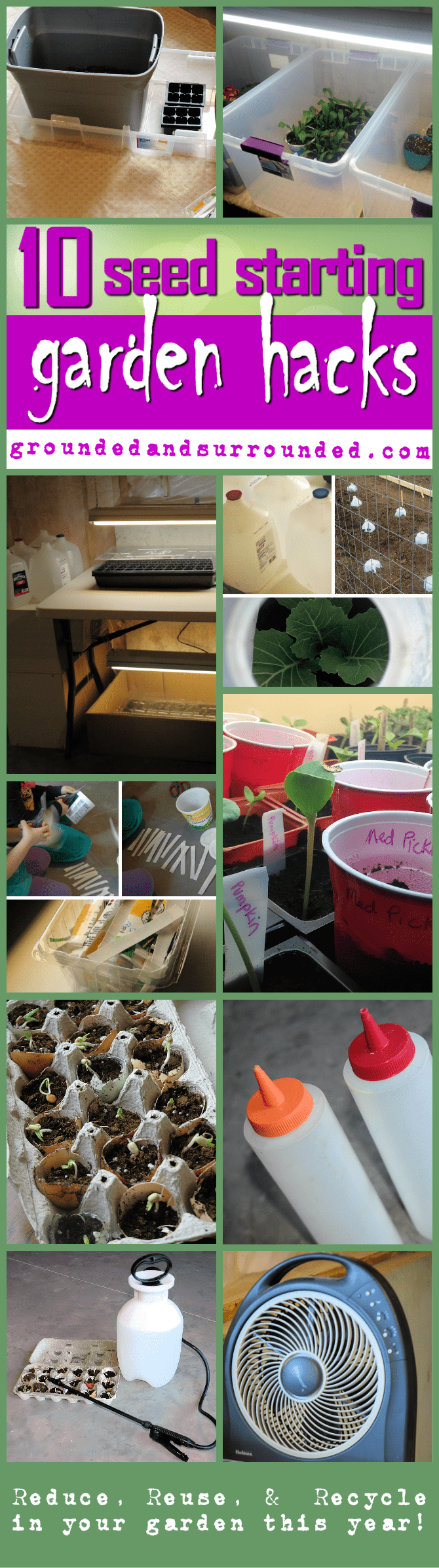 10 Seed Starting Garden Hacks   Grounded & Surrounded