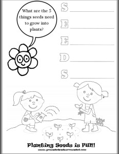 What Do Plants Need To Grow Worksheet. what plants need to