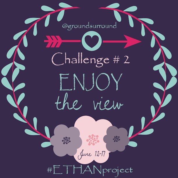 Do you ever get so caught up in your to-do list that you forget to stop and enjoy the view? This week your #ETHANproject challenge is to Enjoy the View.