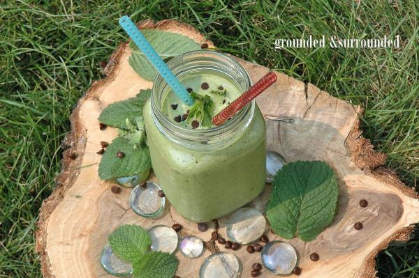 Nutritious Mint Chip Smoothie With spinach, ground flax seed, and hemp (or chia) seeds this is your meal replacement for breakfast - lunch - or dinner! Add a protein punch with the Greek yogurt and the subtle sweetness of raw local honey and banana and you've got a powerful combination of super foods. Try this shake if you are craving ice cream but are looking for weight loss or diet recipes to quench those cravings!