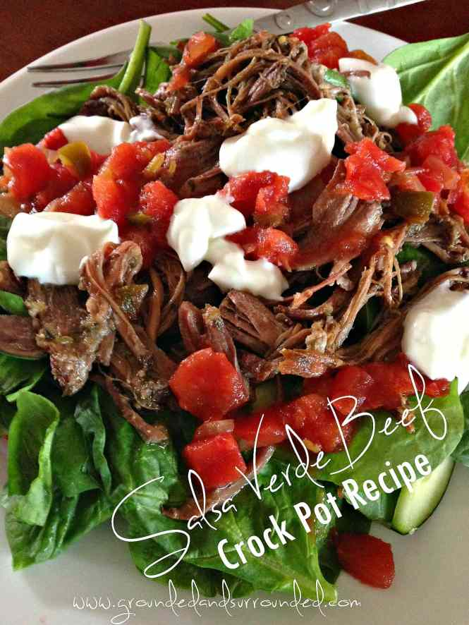 2 Recipes in 1 : Crock Pot Salsa Verde Shredded Beef + Homemade Ranch Seasoning Mix   This is the best slow cooker recipe I have found to cook beef roasts! Use the meat in tacos, burritos, Mexican sandwiches or on salads. Meat recipes like this are my go-tos when I need healthy comfort food. Easy and delicious dinners like this are made for families of all sizes, any day of the week, all year long!