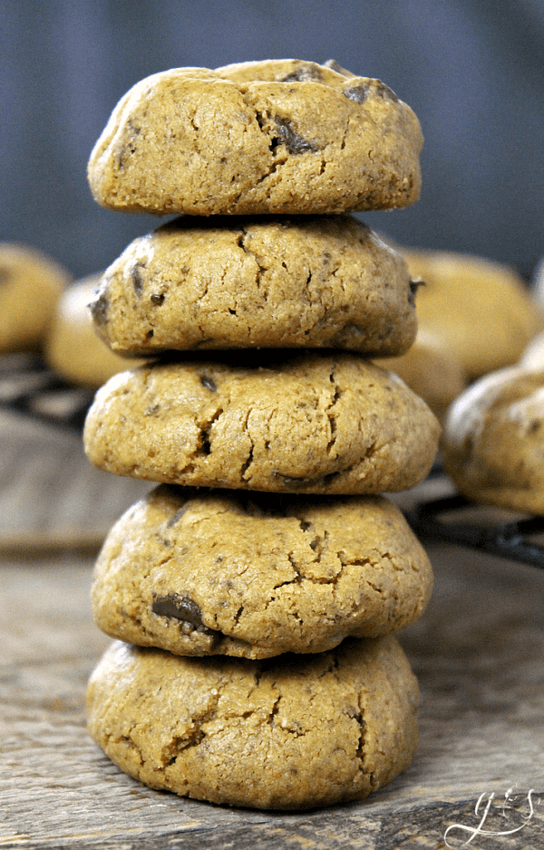The BEST Flourless Peanut Butter Chocolate Chip Cookies | These little bites of goodness contain no flour, are super easy to make, and only contain 6 gluten free pantry ingredients. Refined sugar free, grain free, and clean eating these will quickly become your go-to dessert recipe especially for kids! Make them Paleo with almond butter (extra protein!) and dairy free with Enjoy Life chocolate chips. Baking recipes can be indulgent and healthy too!