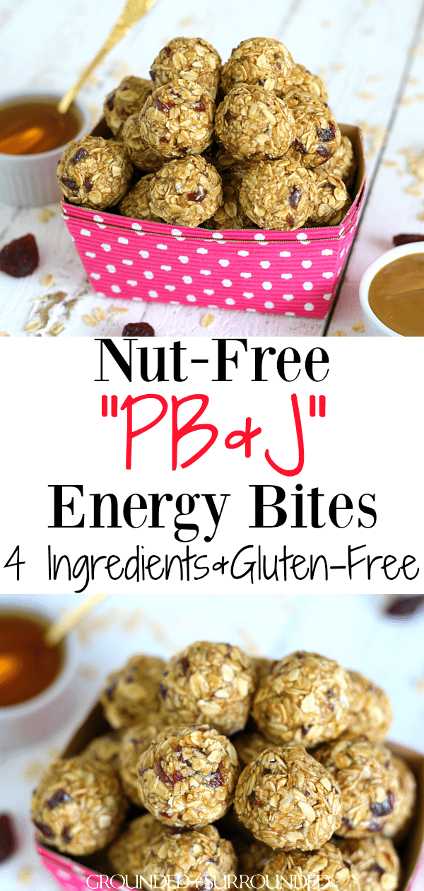 SunButter & Jelly Energy Bites | Have food allergies? This no bake and healthy recipe is just what you need for school lunches and snacks. No sugar, nut free (no peanut butter), gluten-free, and made for kids! Only 4 ingredients including oatmeal, sunflower seed butter, honey, and dried strawberries. PB&J never tasted so good! This easy and clean eating recipe is packed with protein and is also a great breakfast option. Bye-bye sandwiches! It\'s energy bite time! #snacks #nutfree #glutenfree