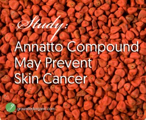 Study: Annatto Compound May Prevent Skin Cancer