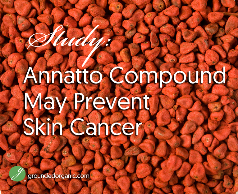Study: Annatto Compound May Prevent Skin Cancer - Grounded Organic