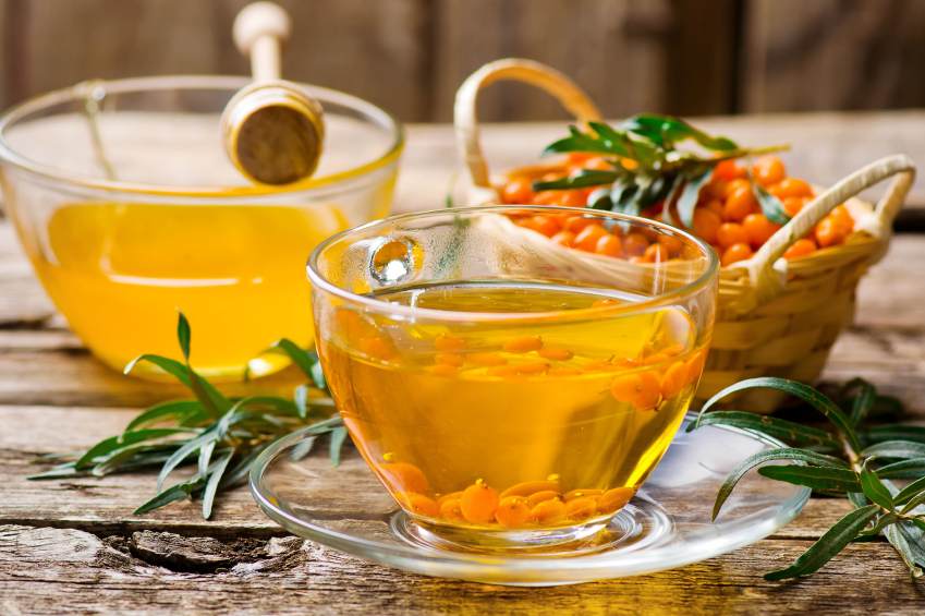 sea buckthorn oil protects liver