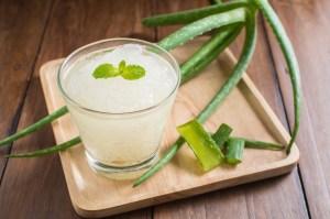 Drinking Aloe Vera Juice May Help with Diabetes