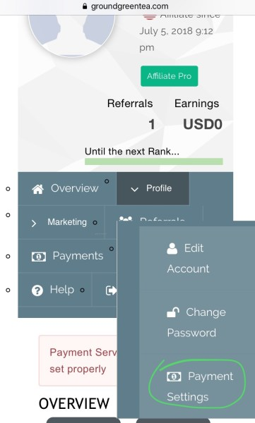 payment account set up