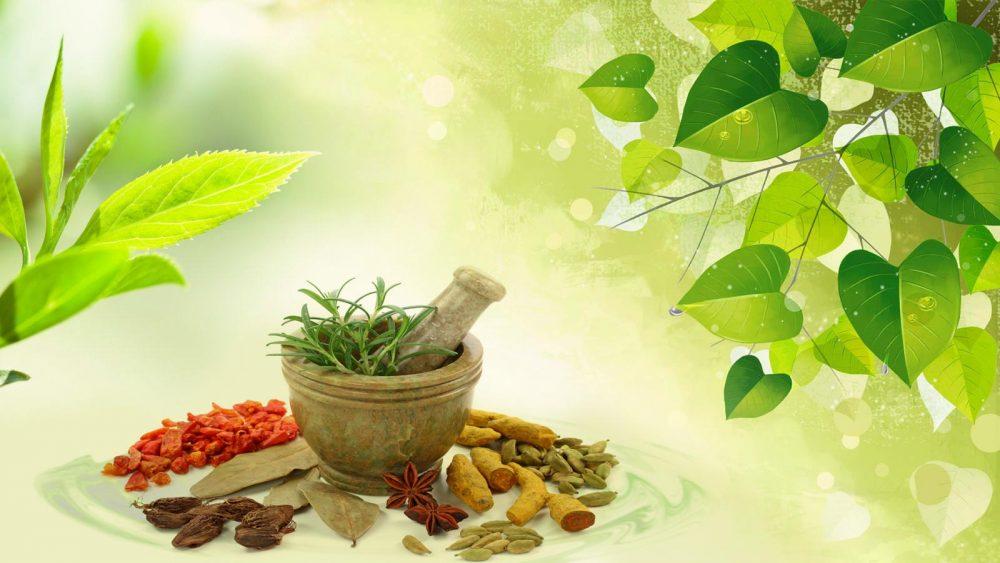 Ancient Ayurveda: New Insights for Wellness – Sei Mee Tea LLC