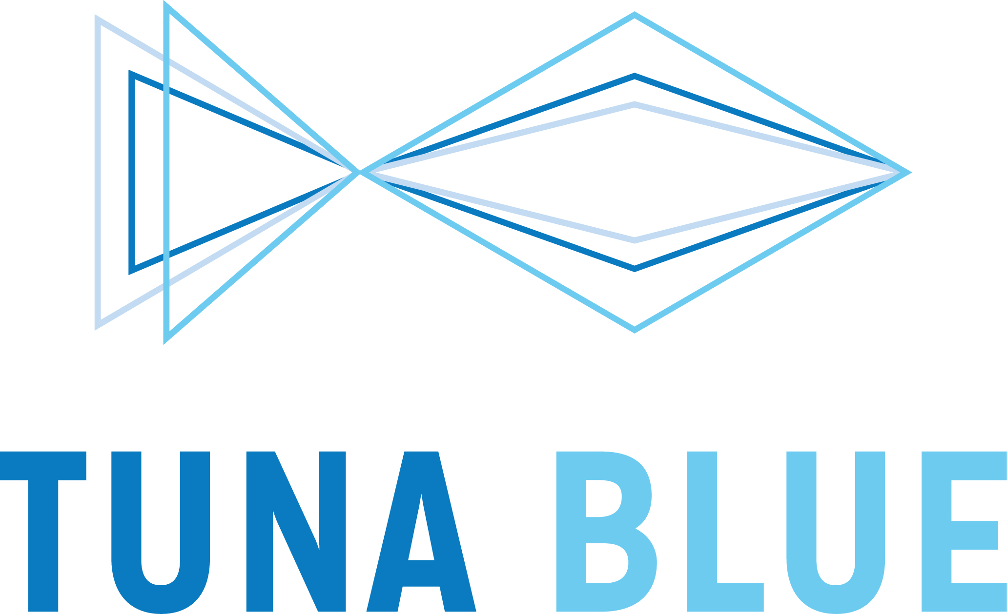 Case Study: Tuna Blue Facilitation using GroupMap to engage stakeholders