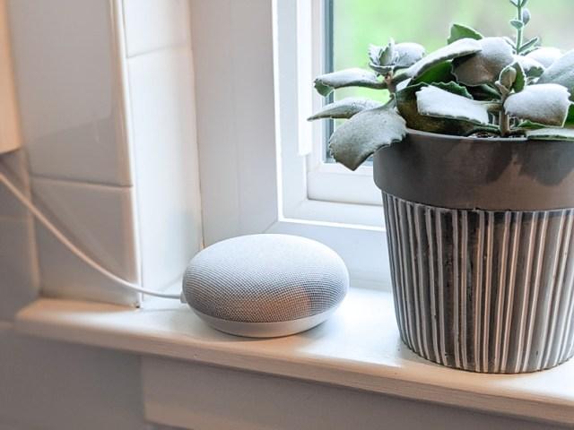Google Home Nest Smart Speaker