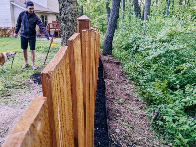 Mulching under our fence line, wooded side after
