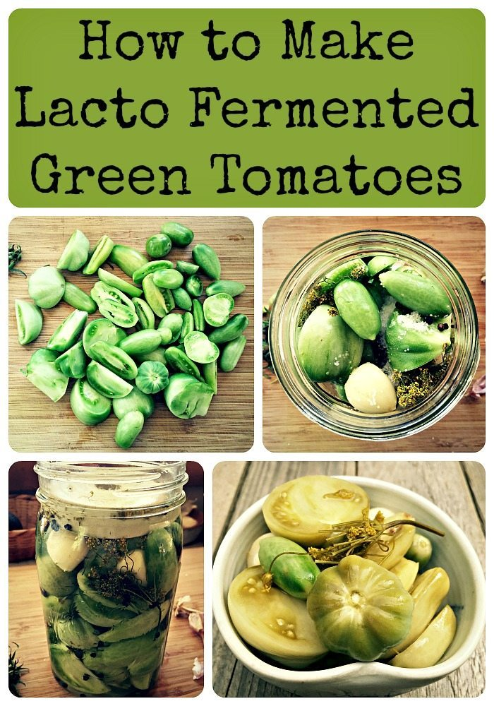 Fermented Green Tomatoes Recipe