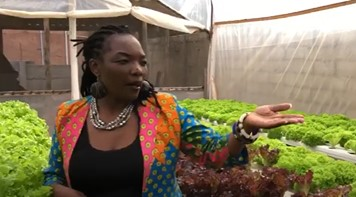 Urban Smallholder Farming Miracle