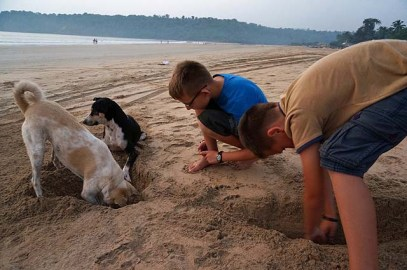 Four boys digging
