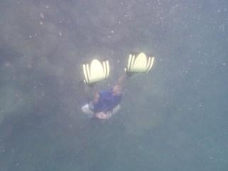 Snorkelling fins