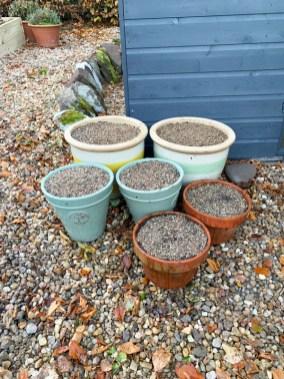 spring-pots