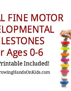 also typical fine motor developmental milestones for ages rh growinghandsonkids