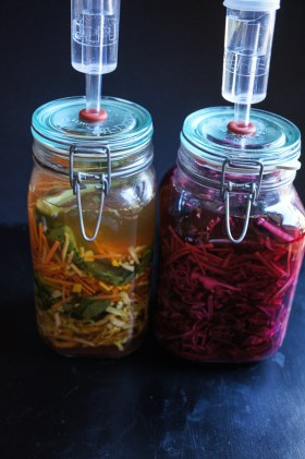 Lactofermented Tumeric and Ginger Carrot and Cabbage | Growing Home