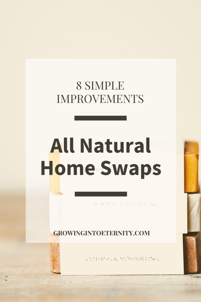 All Natural Home: Make Eight Simple Changes for Huge Improvements