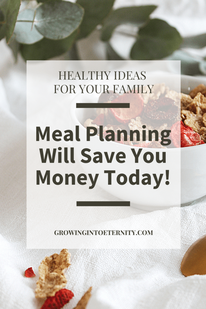 Here are some Healthy Ideas for Your Family: Meal Planning Will Save You Money Today!