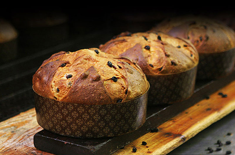Image result for panettone