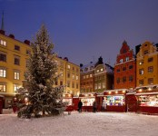 Christmas Market Old Town