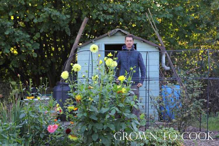 allotment september