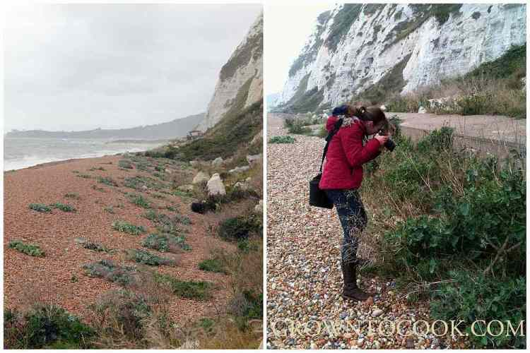 photographing at Samphire Hoe