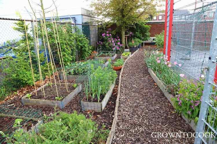 community garden in april
