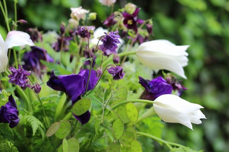 seasonal bouquet early may